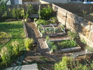 GardenSeptember 2012